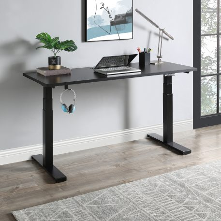 Home Office Height Adjustable Electric Standing Desk
